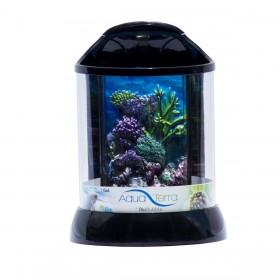 """BioBubble Aqua Terra 3D Coral Background 1 Gallon Black 7.5"""" x 7.5"""" x 10"""" - BIO-20080501"""